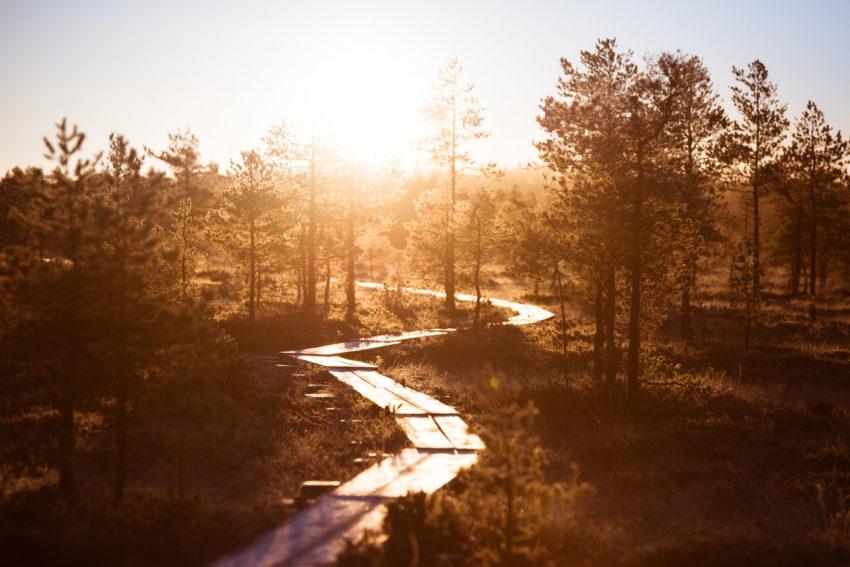 Aktiviteetit_Eerikkilä-luontokohteet