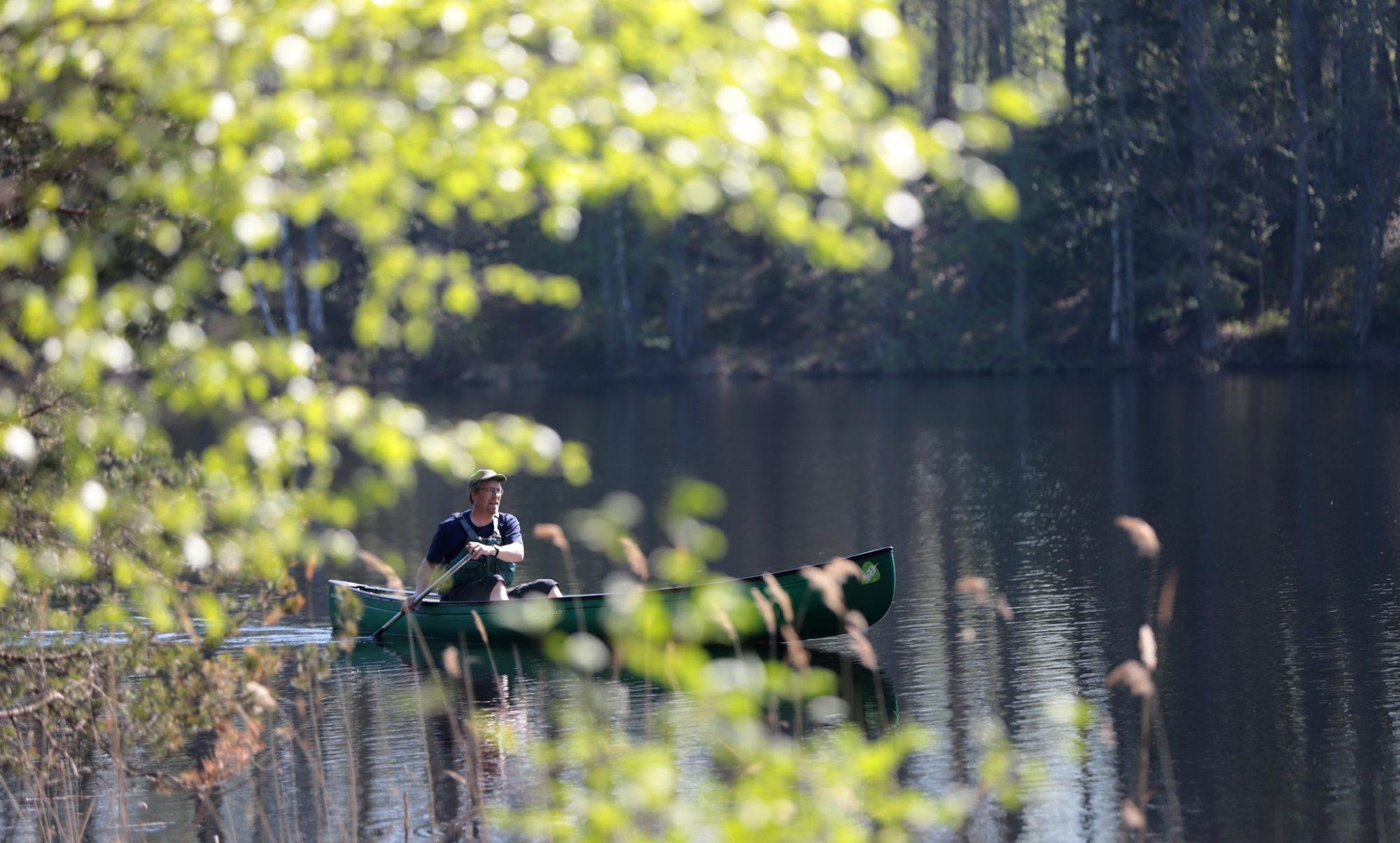 melontaa Liesjärven kansallispuistossa
