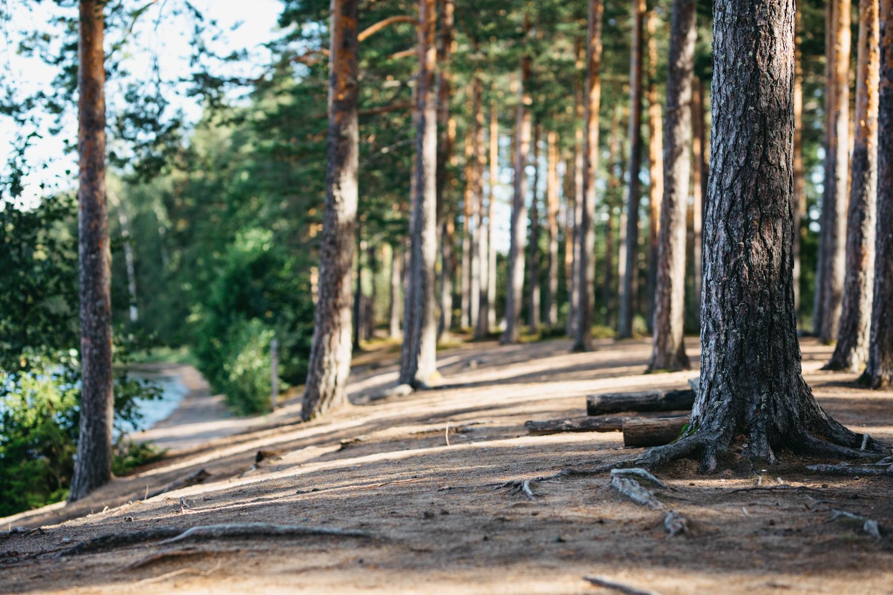 Luontokeskus_Eerikkilä (2)